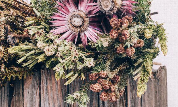 Biljke koje podižu imunitet moćnije od drugih