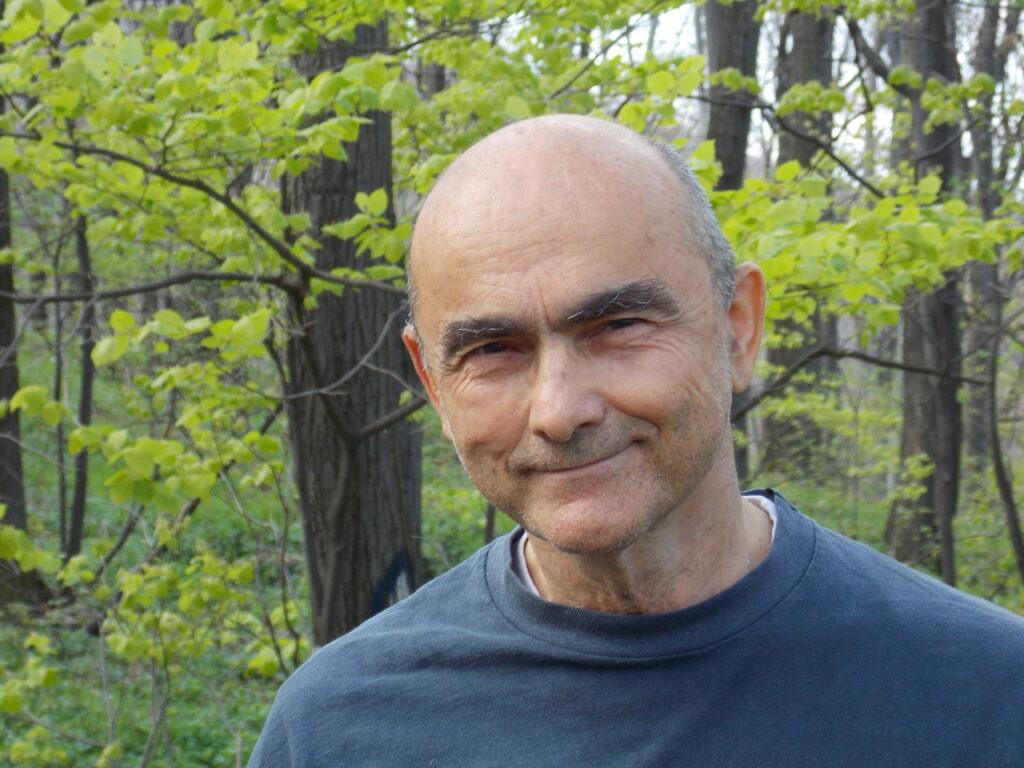 prof.dr vuk stambolović