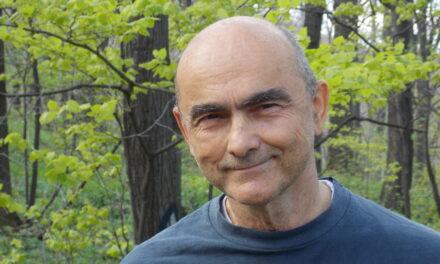 Prof.dr Vuk Stambolović, sedam realnosti o kovidu