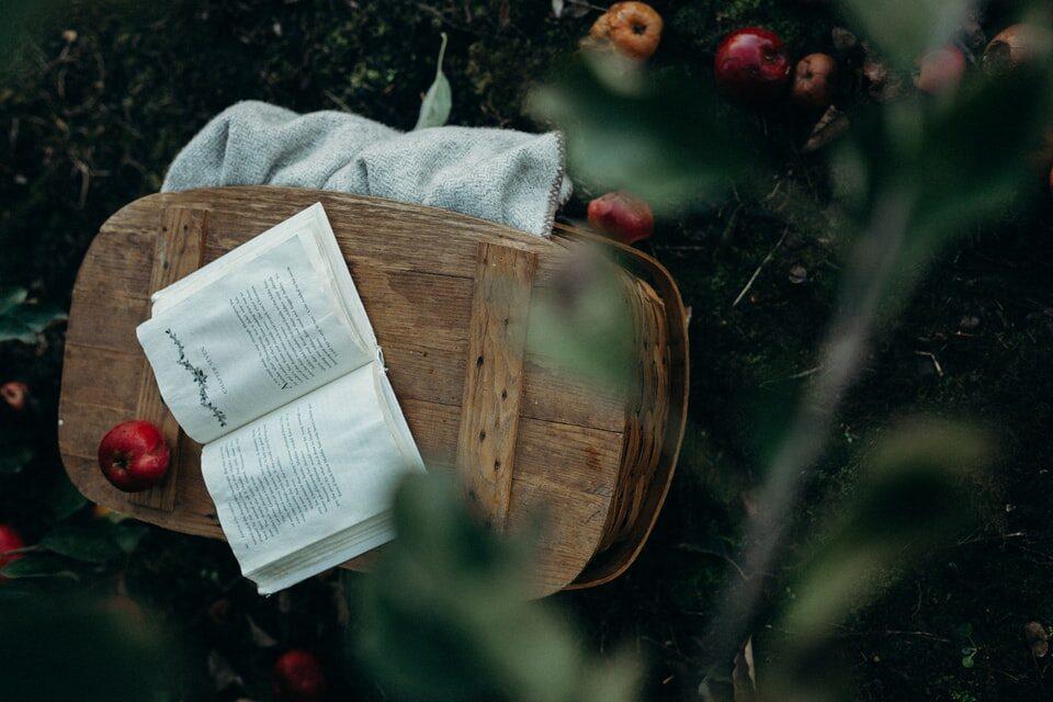baka ruža i njene jabuke
