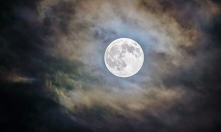 Čišćenje žuči posle zime na pun Mesec