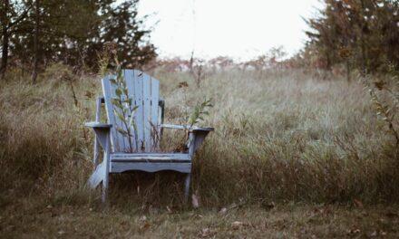 Korovi su prijatelji naše bašte – iskoristimo ih