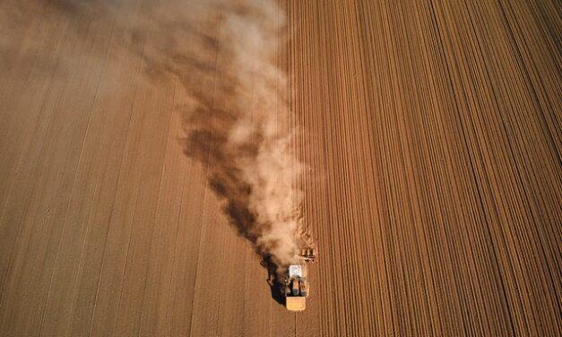 Savremena poljoprivreda slabi sinove i unuke