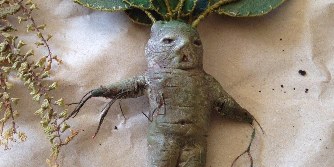 Mandragora, koren koji vrišti i beži kad se bere